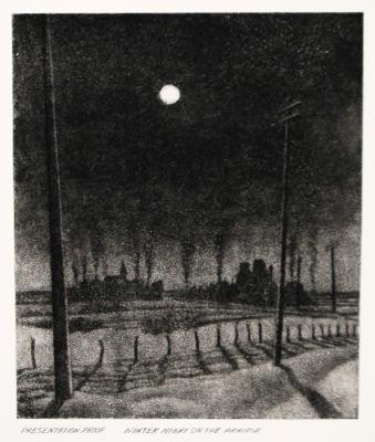 Winter Night on the Prairie